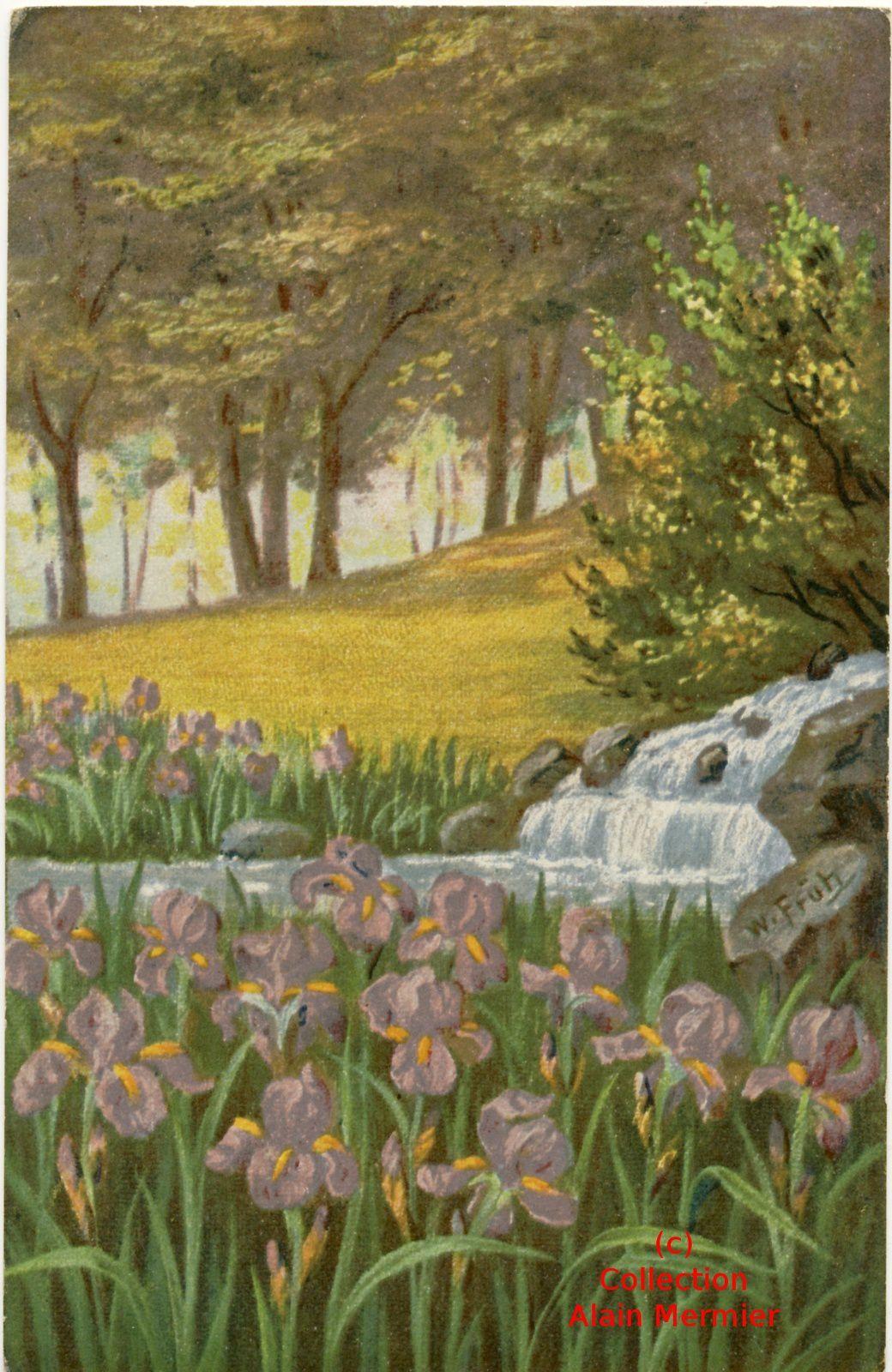 Iris -1867- Illustrateur FRÜH W. Cascade et iris. Allemagne. 1924.