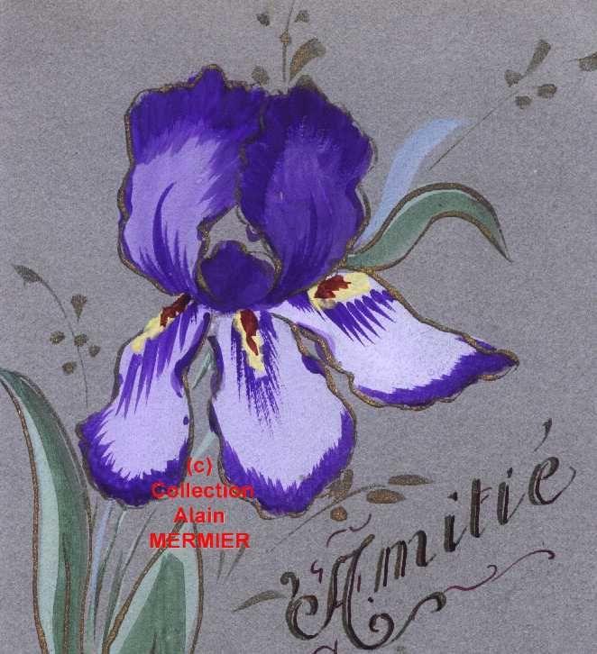 Iris - 1819 - Peint main : Amitié. France.