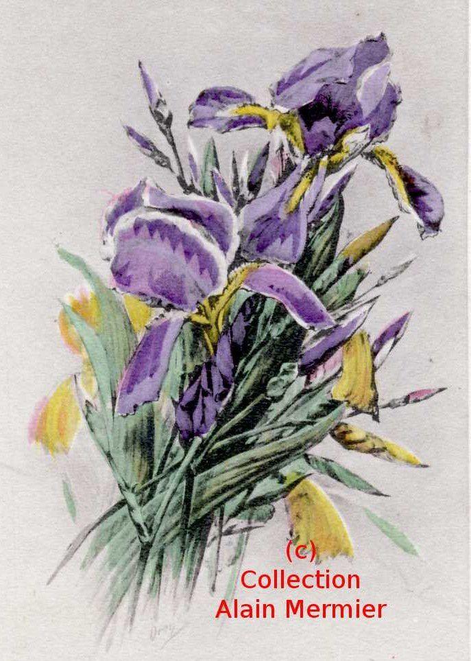 IRIS - 3677 - Carte postale semi-moderne. Illustrateur ORENS. Bonne et heureuse année. France