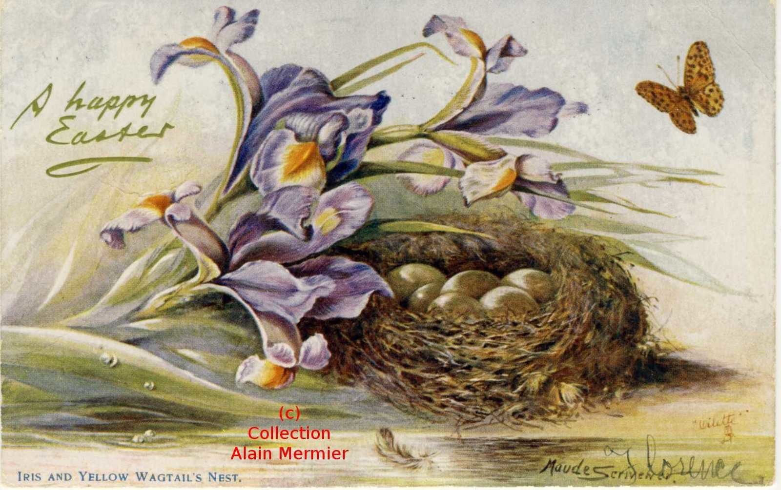 ********************************************* Iris and yellow wagtail's nest.