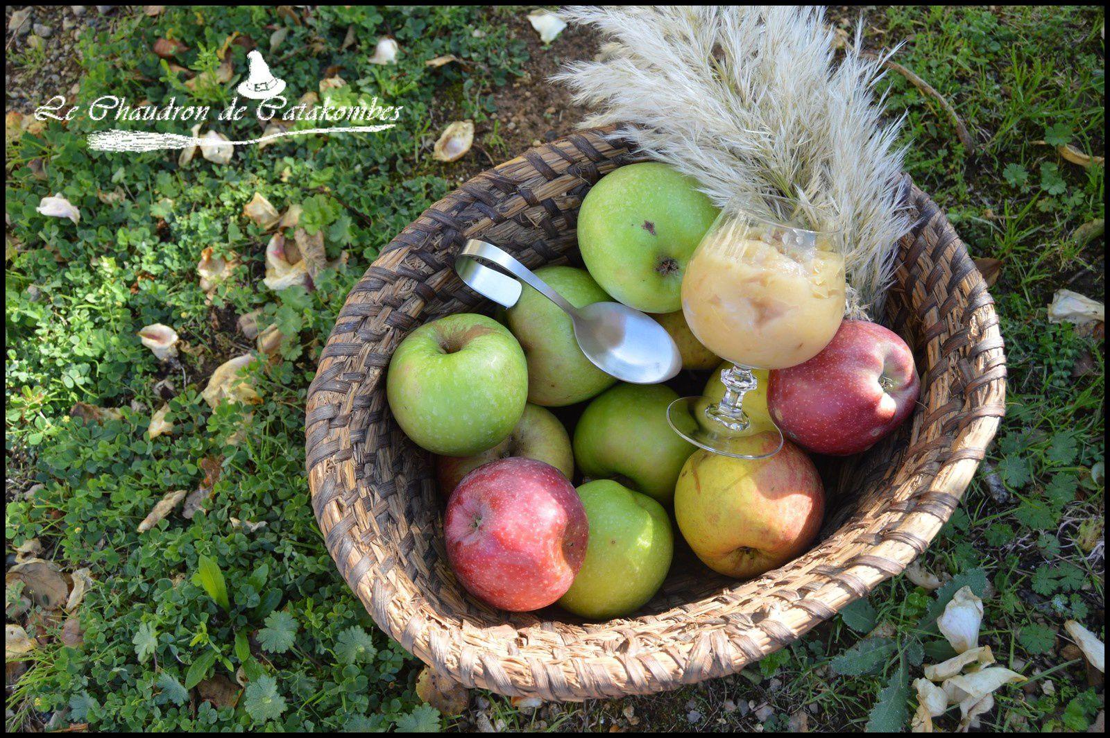Les pommes tombent dans nos jardins et atterrissent sur nos tables. Après la tarte traditionnelle tarte aux pommes, voici donc une compote à l'ancienne qui ravira petits et grands.