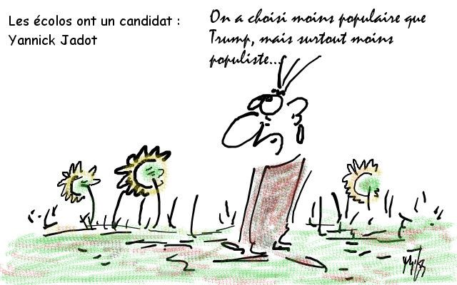 candidat écolo