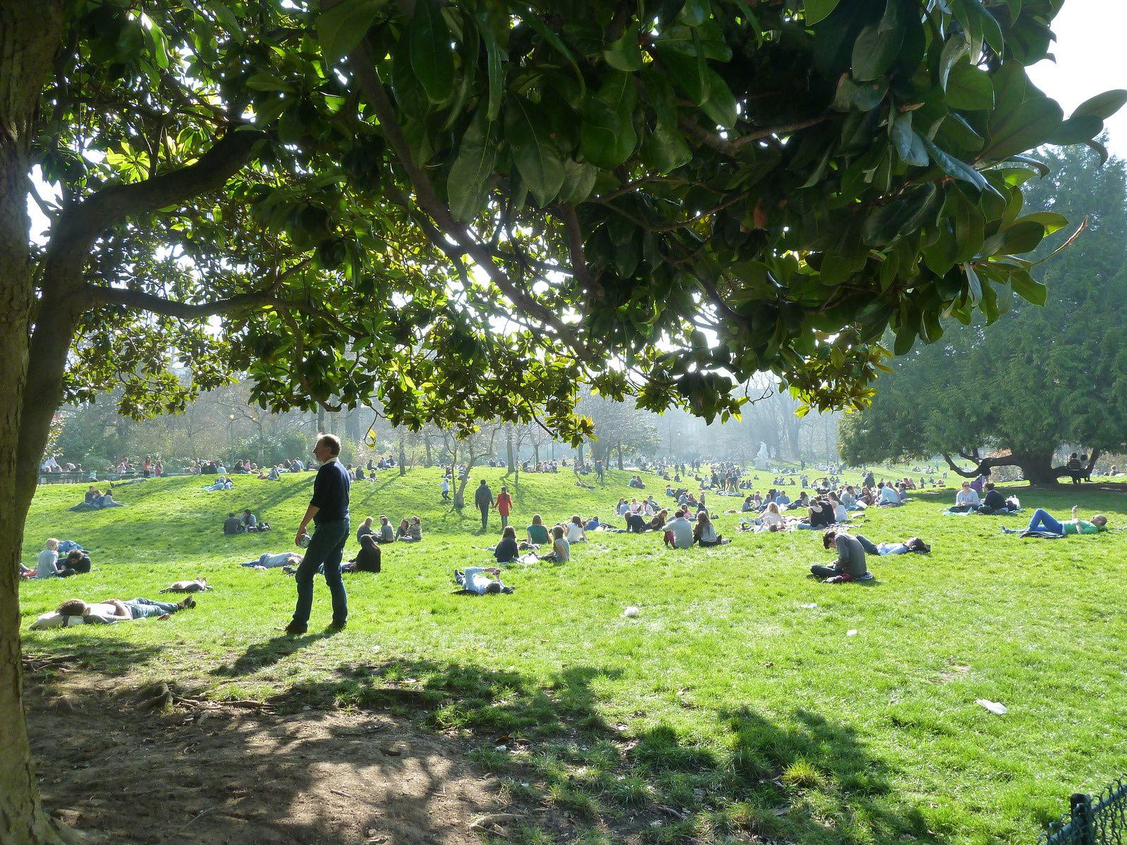 Bien que de nombreux panneaux demandaient de ne pas monter sur les pelouses pour cause de repos hivernal, les parisiens se sont précipités pour profiter des premiers rayons du soleil.