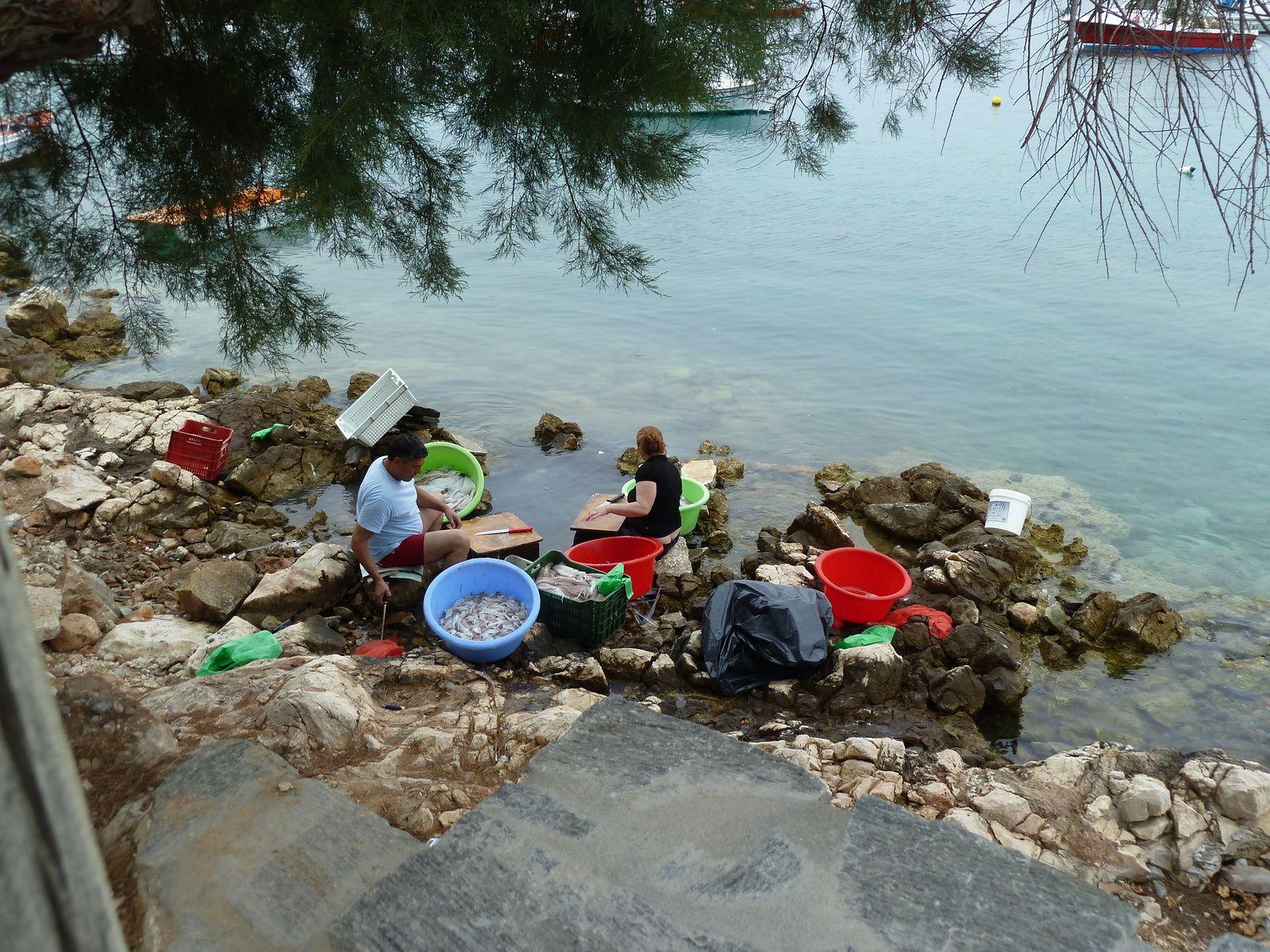En contrebas, sur les rochers un couple de pêcheurs installés sur les rochers, les pieds dans l'eau, nettoient des poulpes et des encornets.