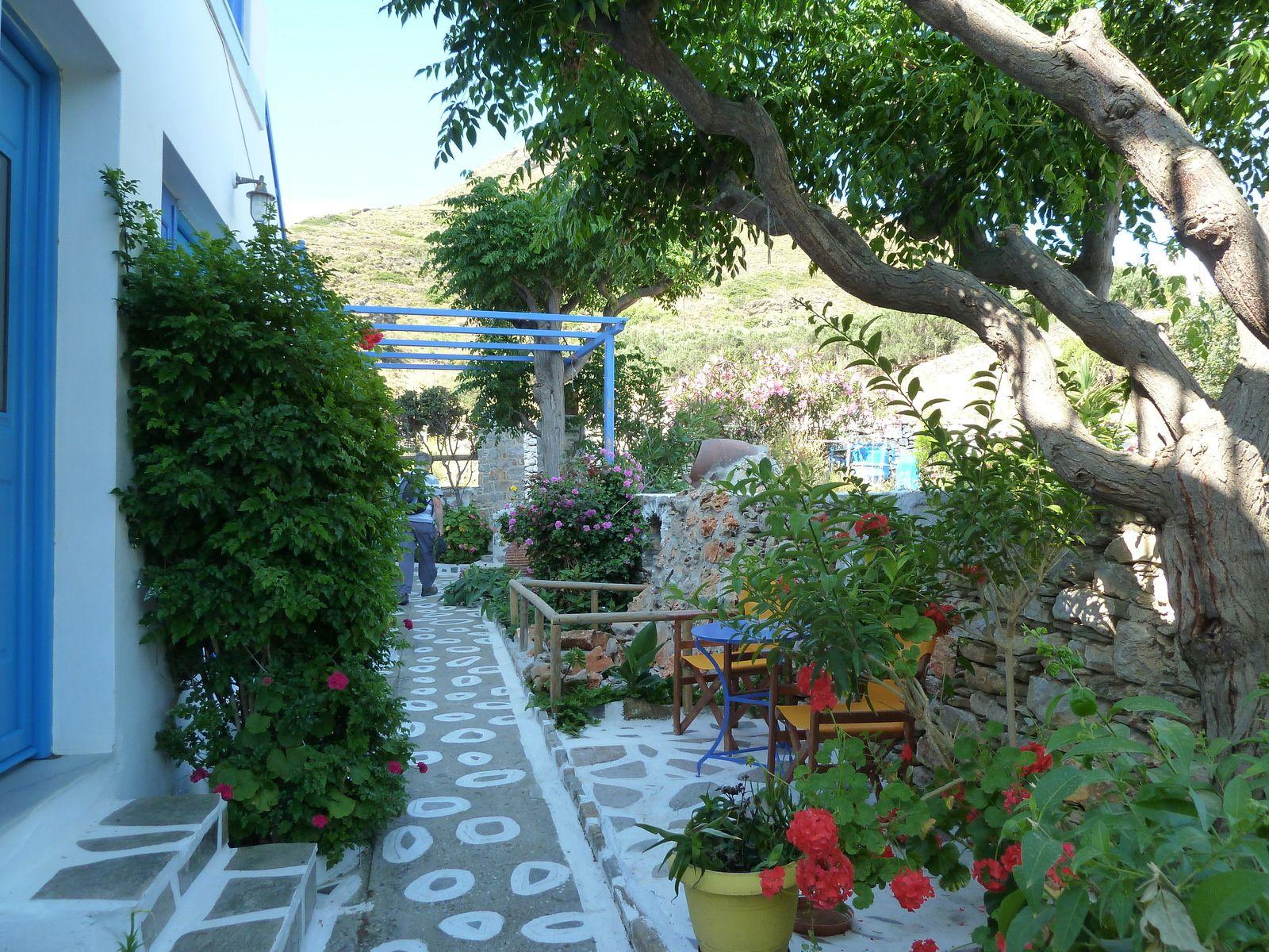 Le jardin de notre petit studio.