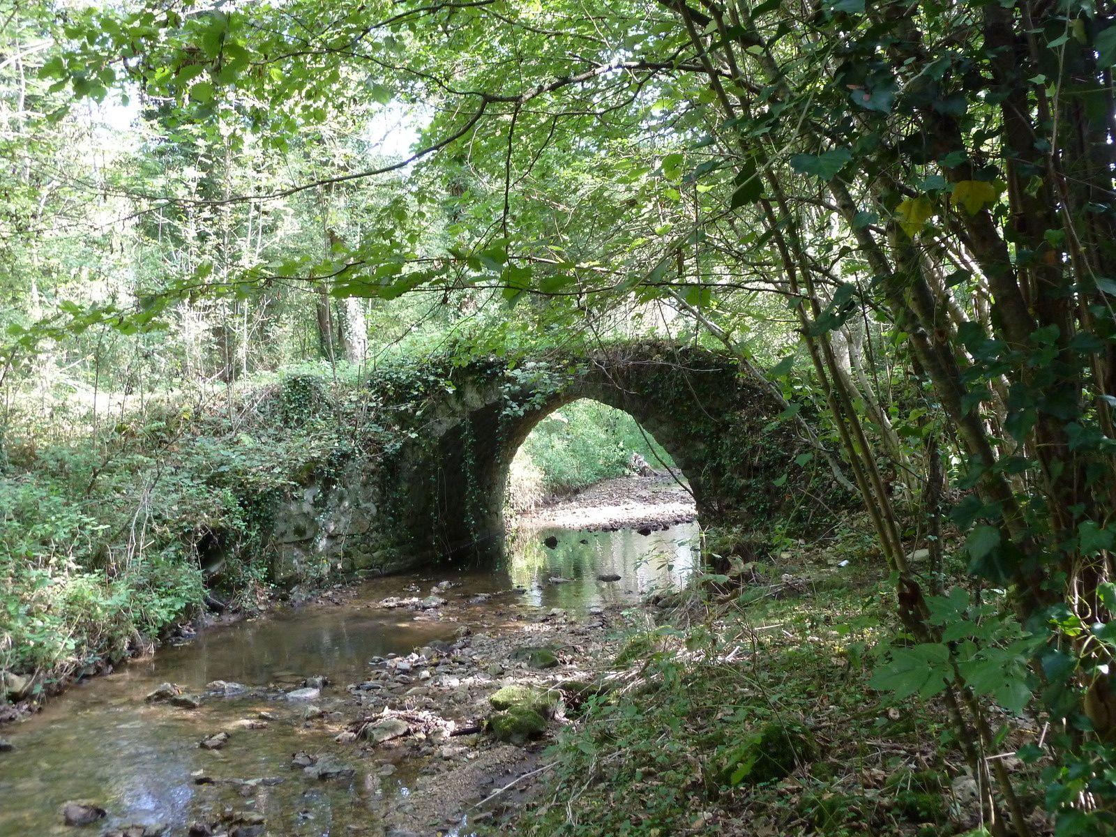 Plus haut, par le PR, nous longeons le Rû du Chatelet enjambé par un charmant petit pont.
