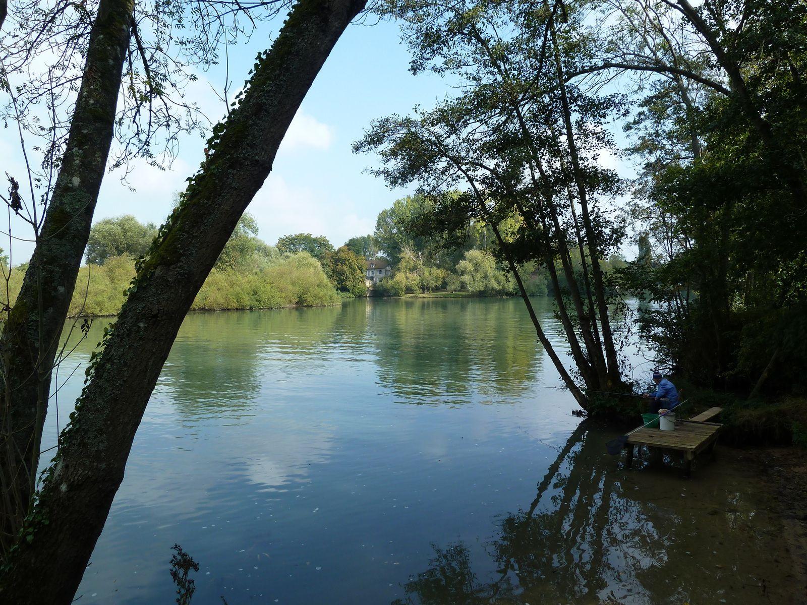 Après la pause, nous regagnons les bords de Marne à Germigny l'Evêque.