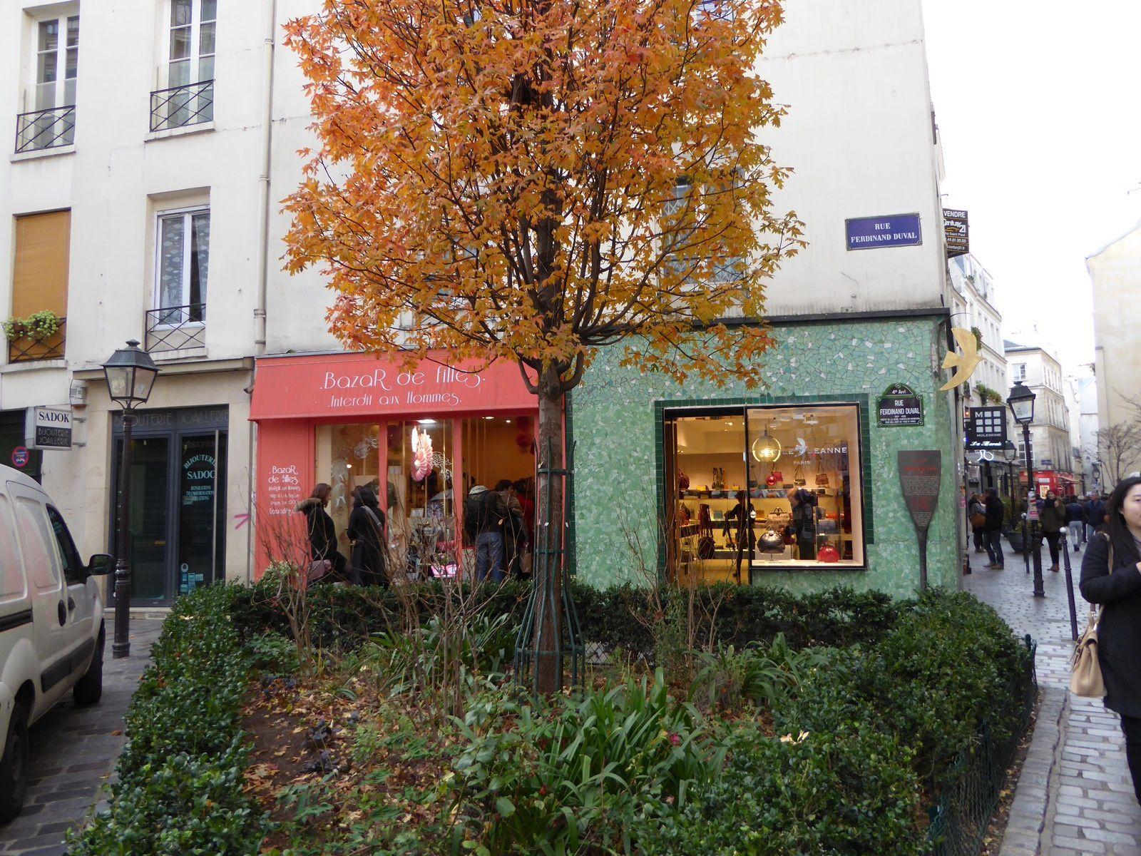 Promenade à Paris Hiver 2015. 1/..