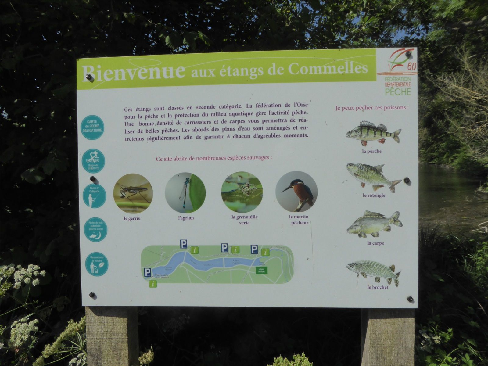 Randonnée d'Orry-la-Ville à La Borne Blanche - 15 km.