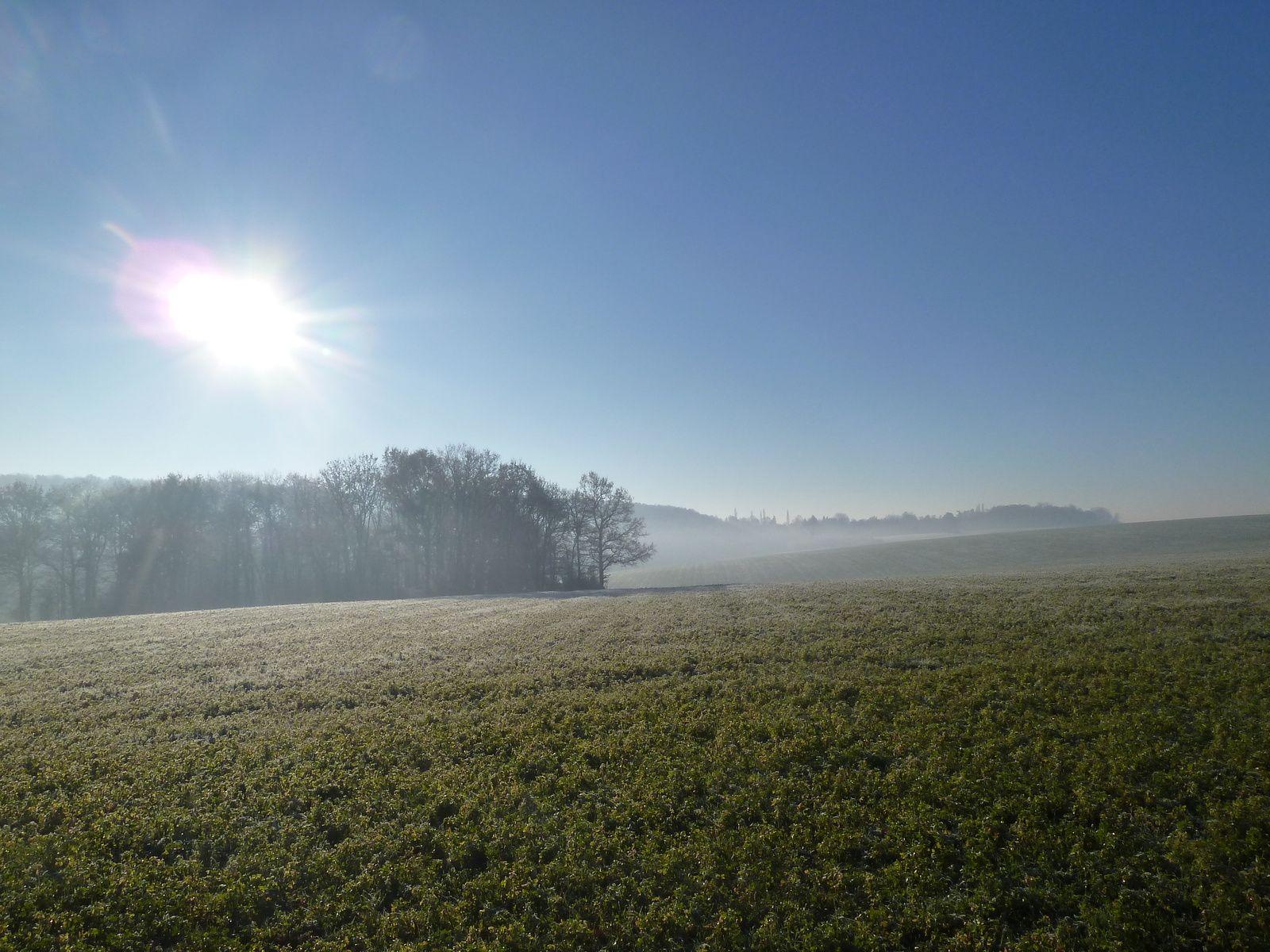 Le soleil fait sortir la brume qui monte lentement de la terre, c'est très beau.