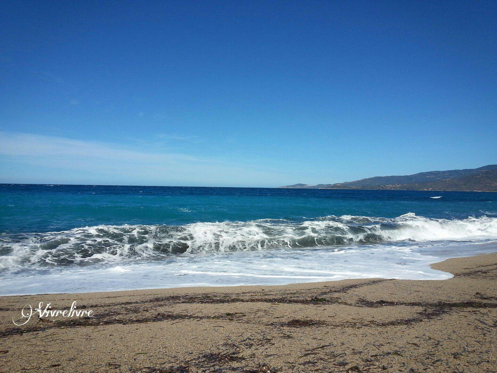 Golfe de Sagone - Corse du Sud (août 2016)