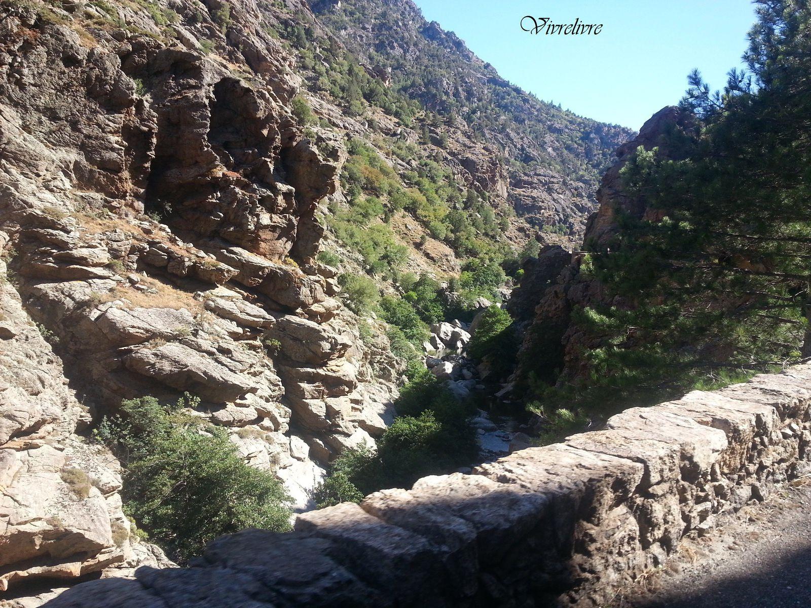 Scala di Santa Regina - Région du Niolu, Haute-Corse (août 2016) Une route étroite et tortueuse, dominée par des roches et en contrebas une petite rivière.