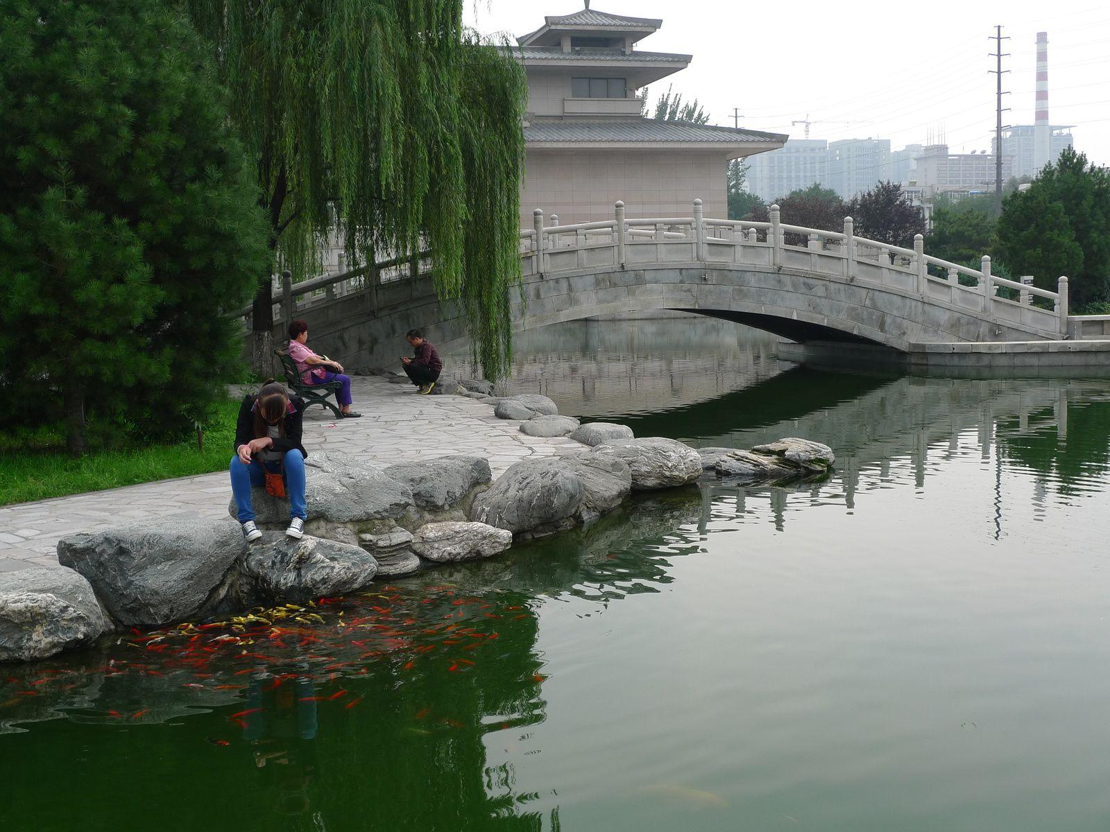 Xi'an visite des pagodes