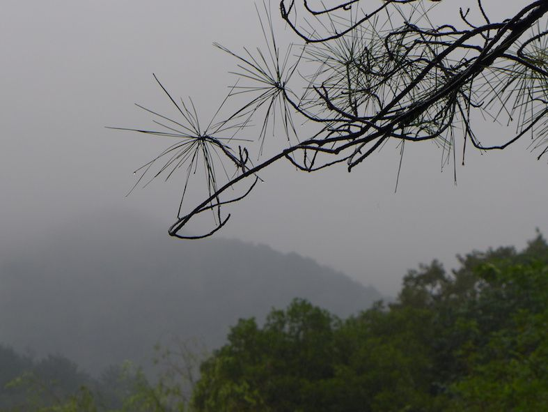 Hangzhou le parc Feilaifeng