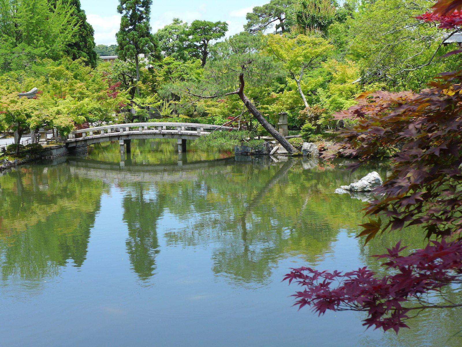Le chemin de la philosophie, Gion et Shinbashi