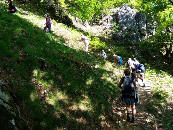 HAUTZA ( 1306 m ) depuis le col d'Ispegui. 15 mai 2017.