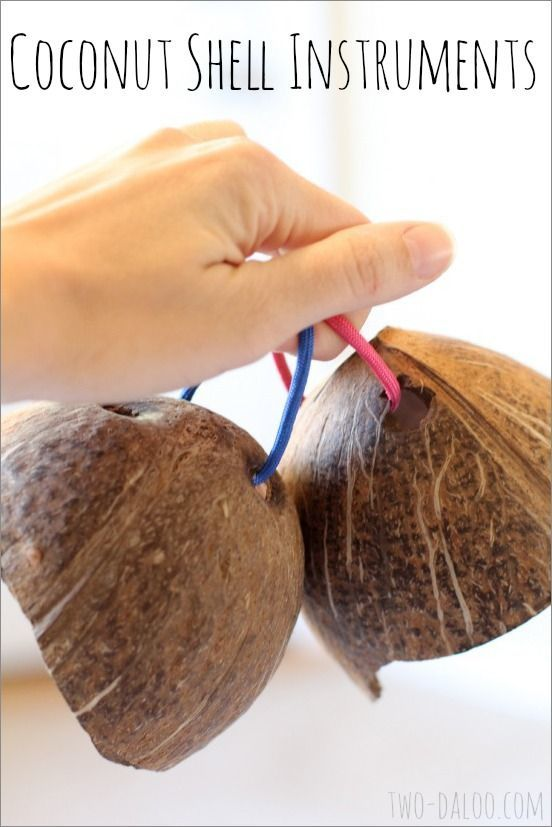 Instrument de coconut | two-daloo.com