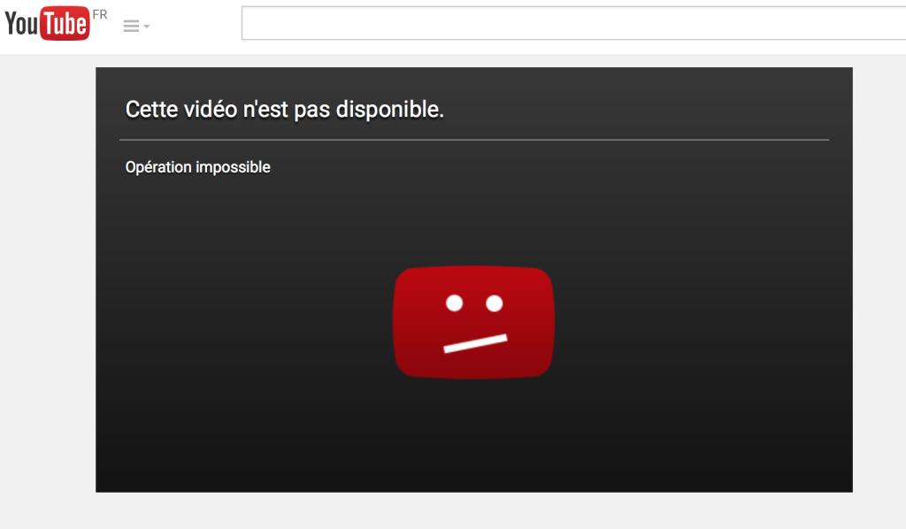 Affaire Charlie : la vidéo de Manuel Valls en compagnie de Meyer Habib a été censurée (Panamza)