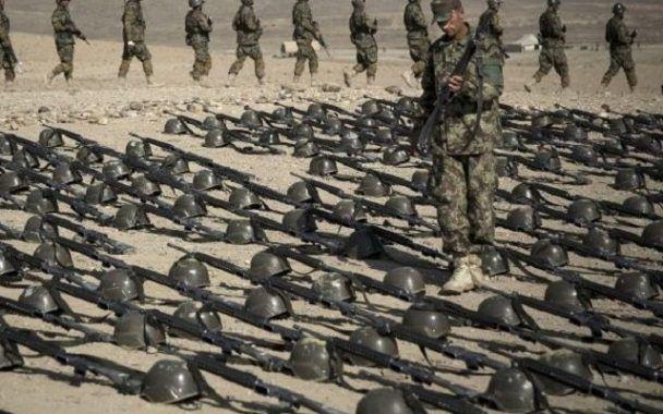 Tueries de masse : comment l'Australie a réglé le problème des armes à feu (Nouvel Obs.com)