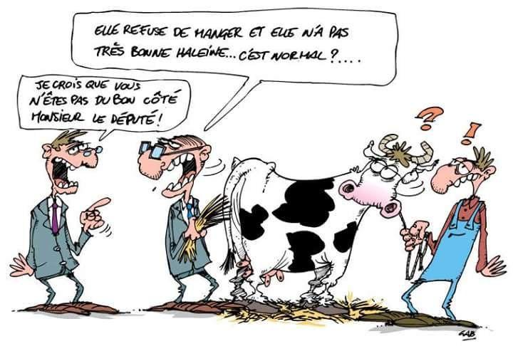 Le blog de yvonlabaudruche visiter sans mod ration et - Vache dessin humour ...