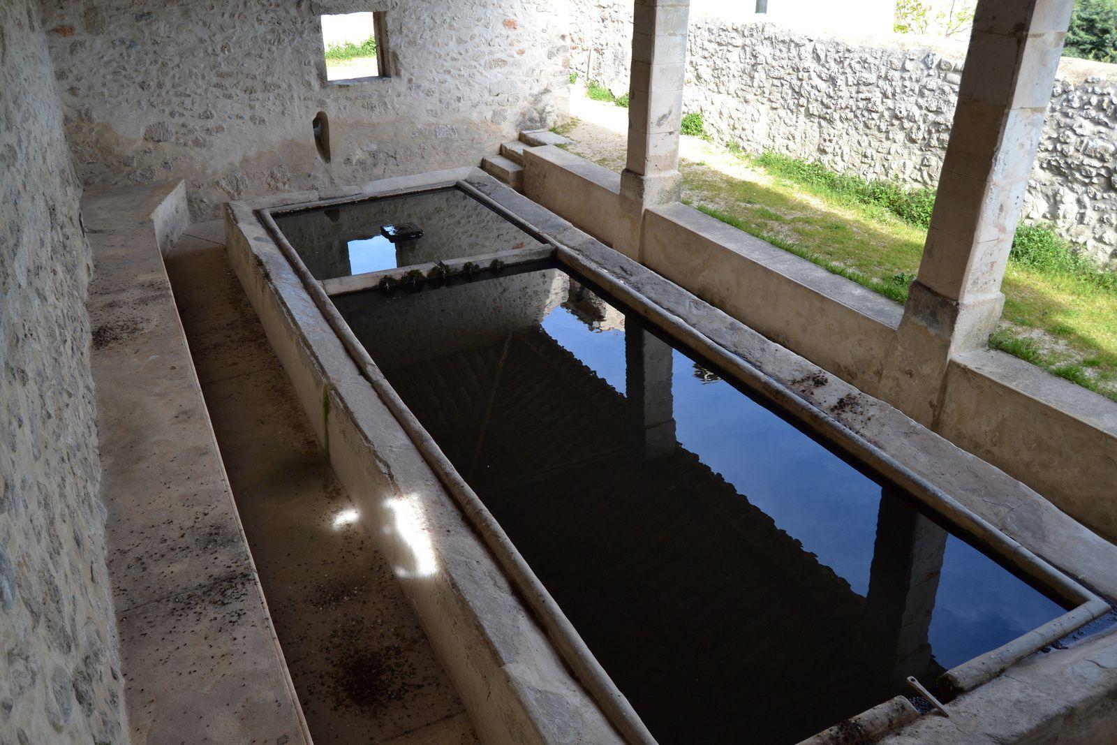 L'implantation du village de La Garde Adhémar sur un plateau calcaire rendit difficile l'alimentation en eau des habitants. Unique point d'eau situé à l'extérieur de l'enceinte médiévale, cette source, qui ne tarit pas en été, fit l'objet de soins attentifs de la communauté villageoise pendant de siècles.
