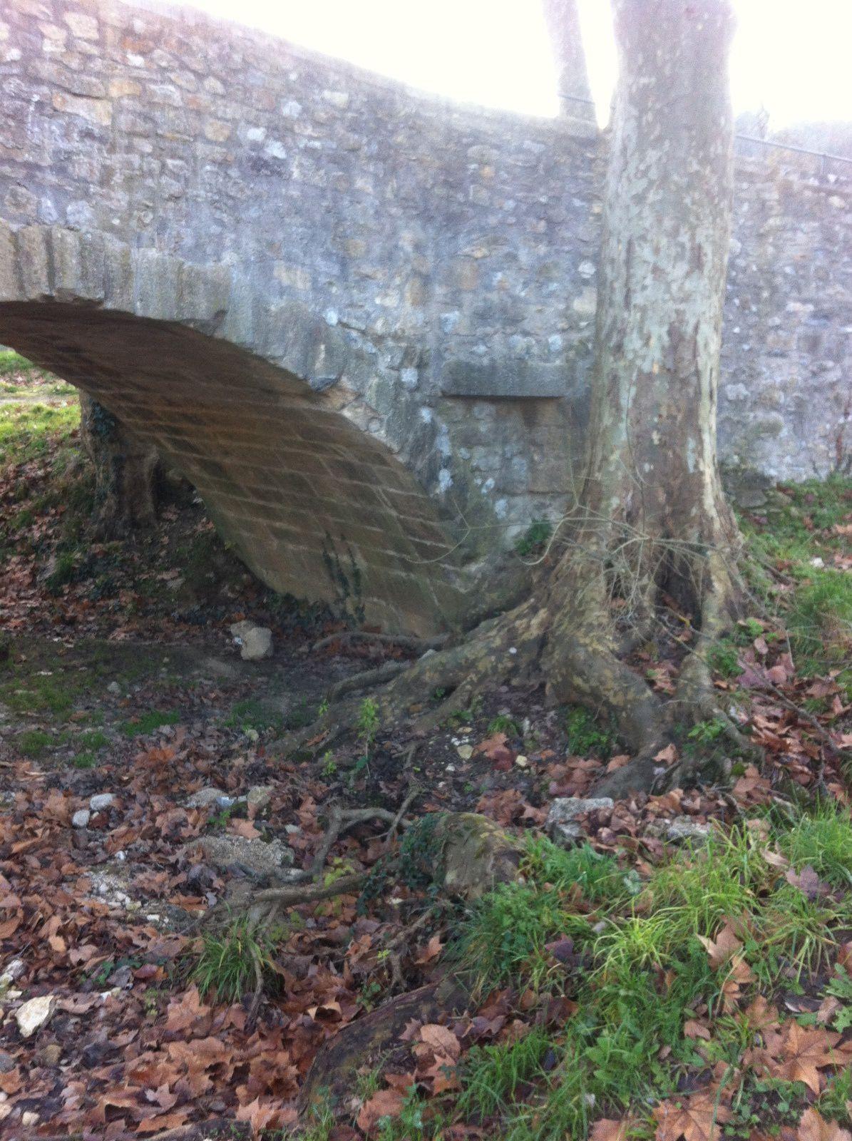 Un pile du pont avec un visiteur envahissant...Il avait échappé aux bombardements, mais pas à la crue de la Cèze en 2002 ni à un chauffeur de poids lourd peu scrupuleux en 2003. Le pont Charles-Martel était depuis sérieusement endommagé au niveau des parapets.