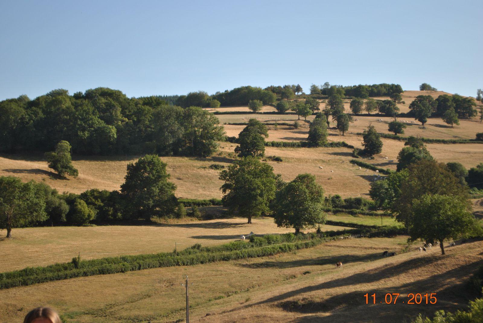 la ferme de saint pierre (chambres d'hôtes, bourgogne)