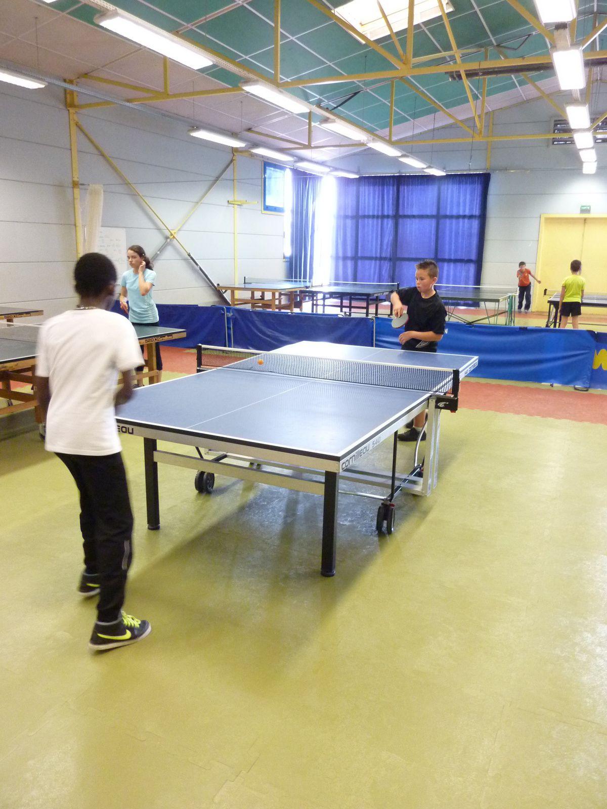 Journée Formation Jeunes Arbitres (Handball, Tennis de Table)