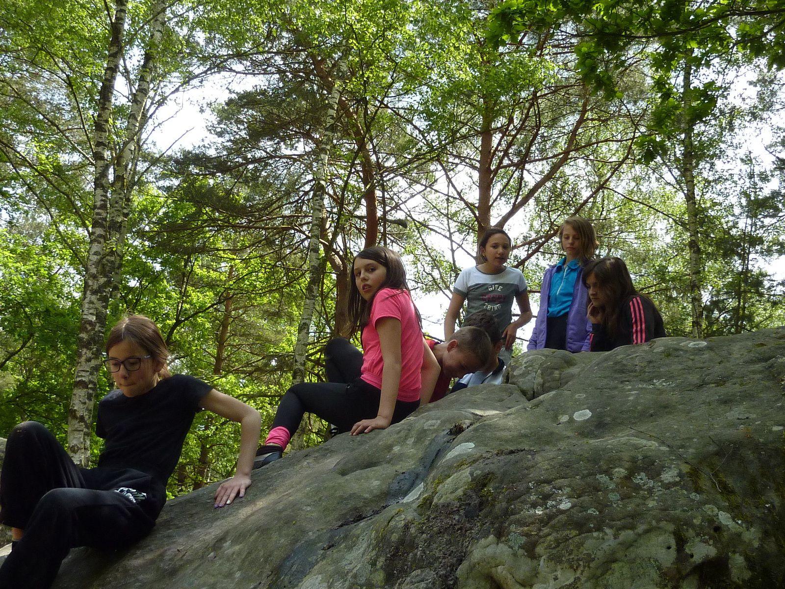 Escalade Fontainebleau La canche aux merciers mai 2016