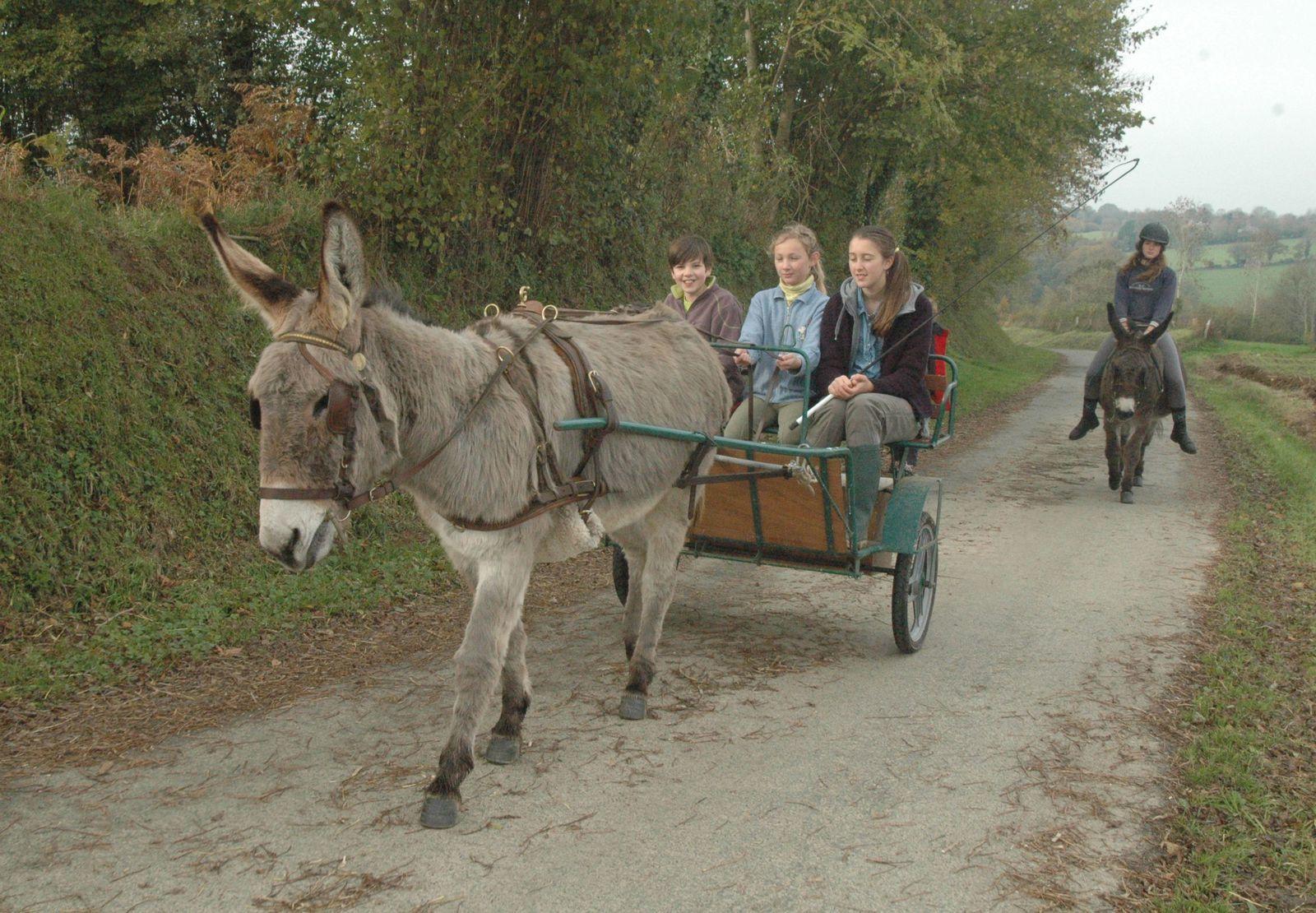 l'Echo des sept routes N°33 : Saga ou ce que peut nous enseigner un âne