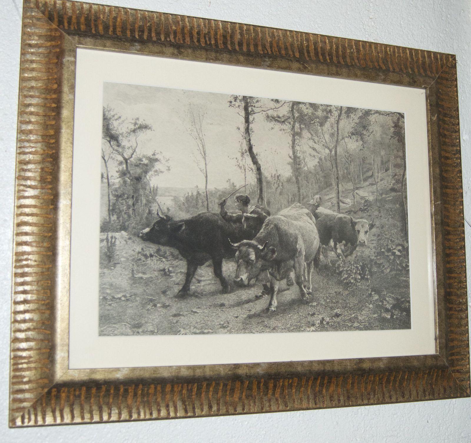 Alerte troupeau vaches taureaux. Eau forte d'Alfred Boilot d'après Léon Barillot.
