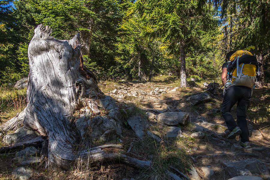 Randonnée : le tour du mont Tournairet