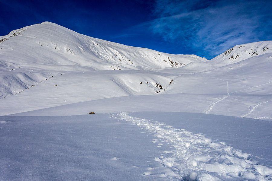 Première sortie dans la neige...