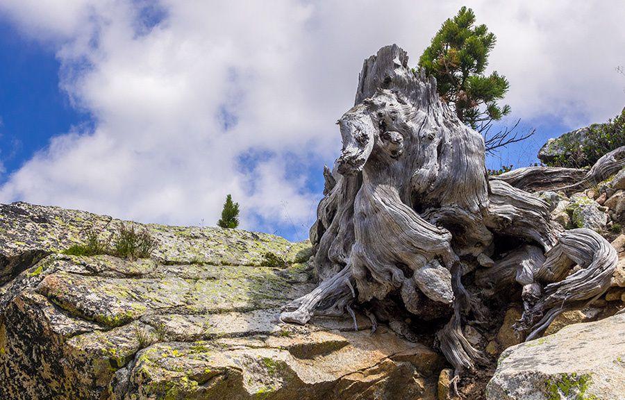 Randonnée à la Tête Mercière (2491m)