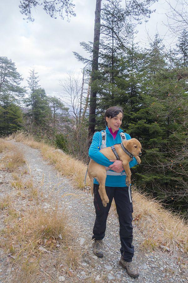 Première randonnée pour Lubie depuis Bairols
