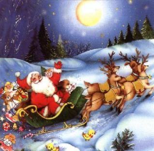 Noël : son sapin, ses guirlandes et ses cadeaux