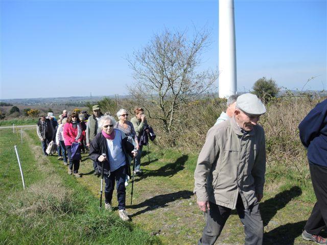 Les marcheurs sur la trace des courlis de la lande de Lanfains