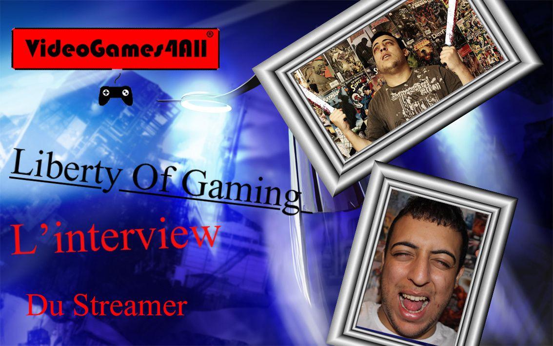 Etre streamer en 2014 ? L'interview de LibertyOfGaming !