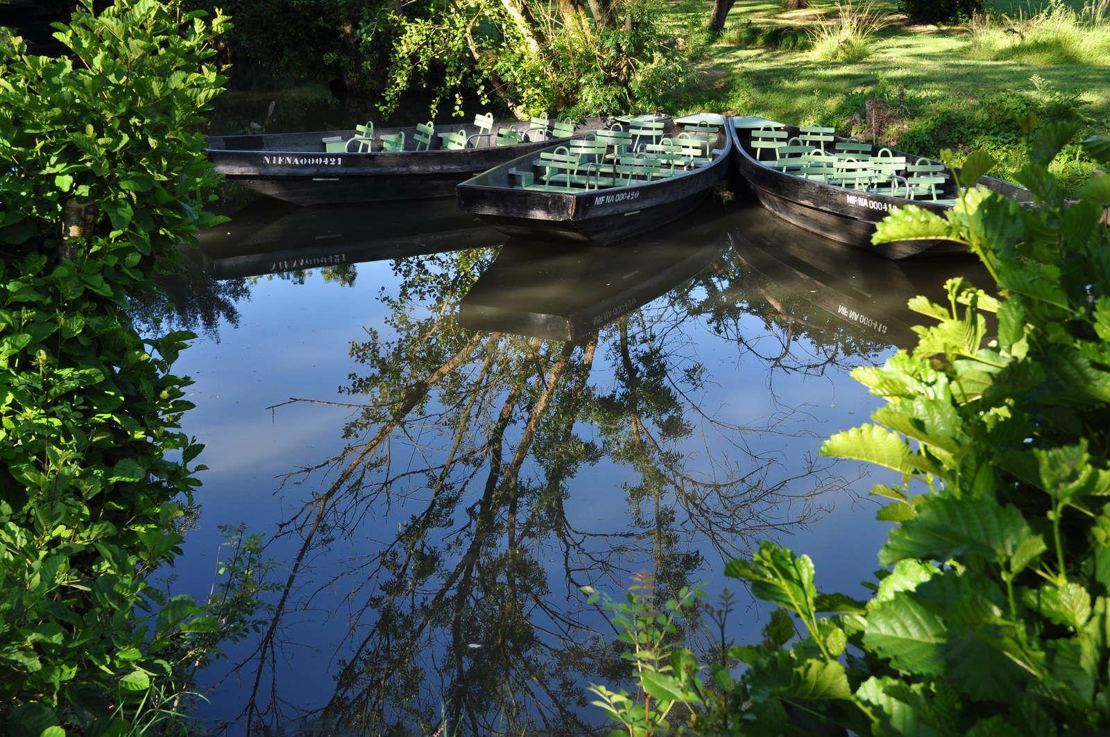 Petite balade dans le Marais Poitevin *4*
