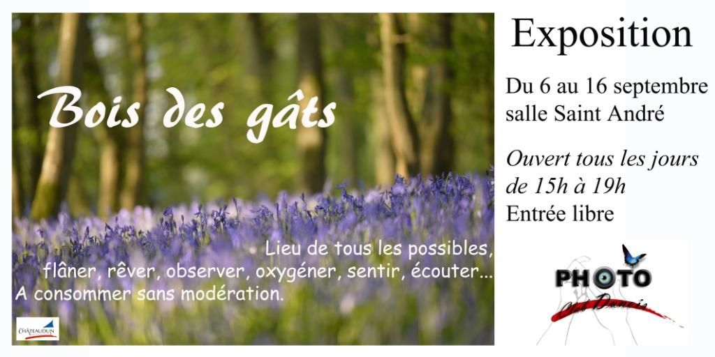 Expo &quot&#x3B;Bois des gâts&quot&#x3B; par le Photo Club Dunois