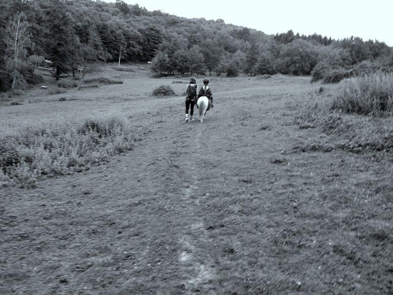 Centre Equestre, le Couzon