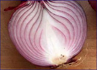 Tagliare le cipolle senza lacrimare: ricetta cipolle gratinate