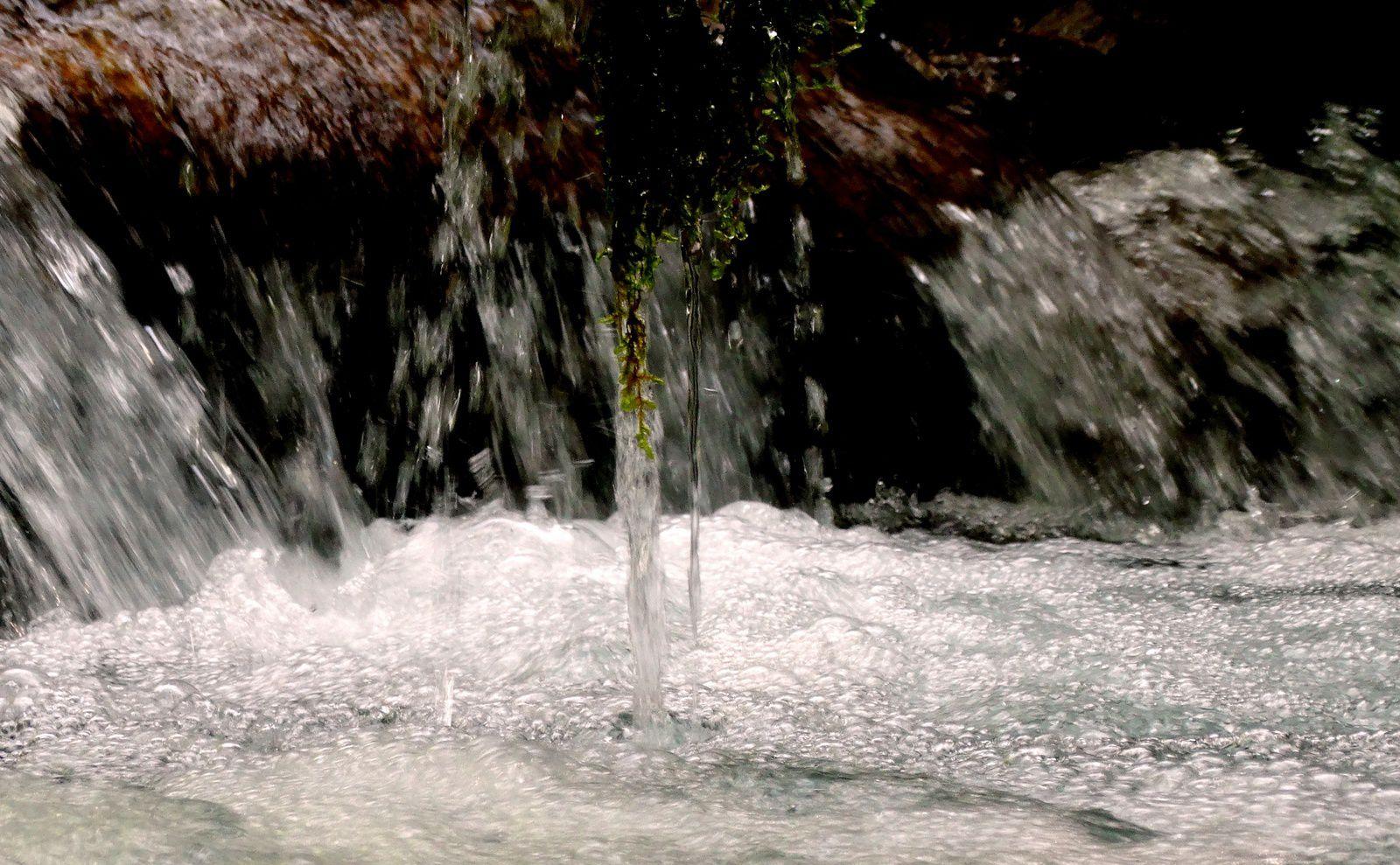 1008 - L'eau vive