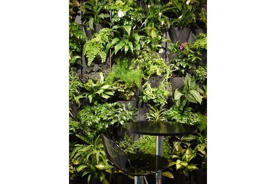 Rapide à monter, ce mur végétal modulaire