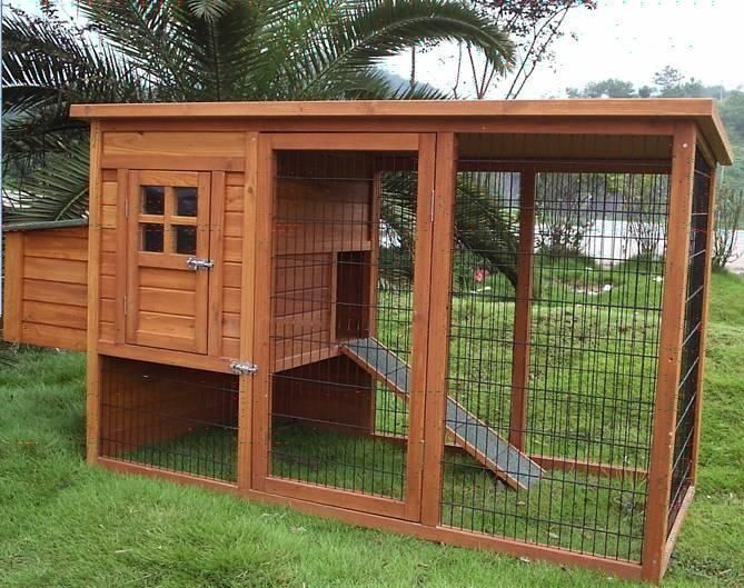 chicken coops website tips for building your own chicken
