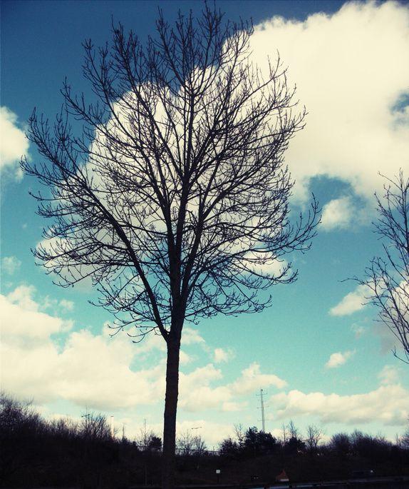 """NAHILA. """"Le ciel, Nous l'avons construit par Notre puissance et Nous l'élargissons constamment. """"  (Sourate adh-Dhâriyât, 47)"""