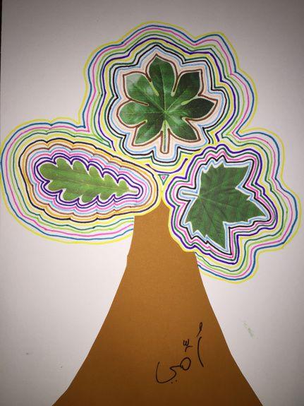 De jolis petits arbres