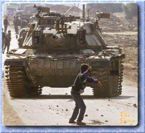 La communauté internationale doit accélérer la mise en place d'une « zone de catastrophe humanitaire à Gaza »