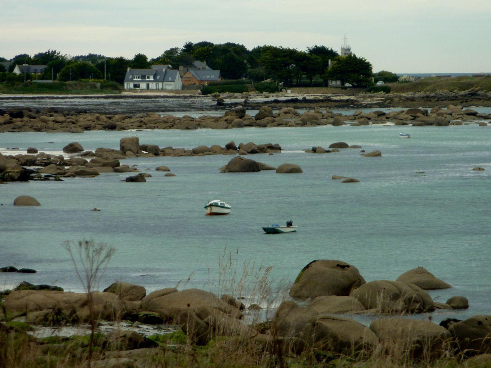 Activité de saison : les tracteurs s'activent sur la plage à ramasser le goemon