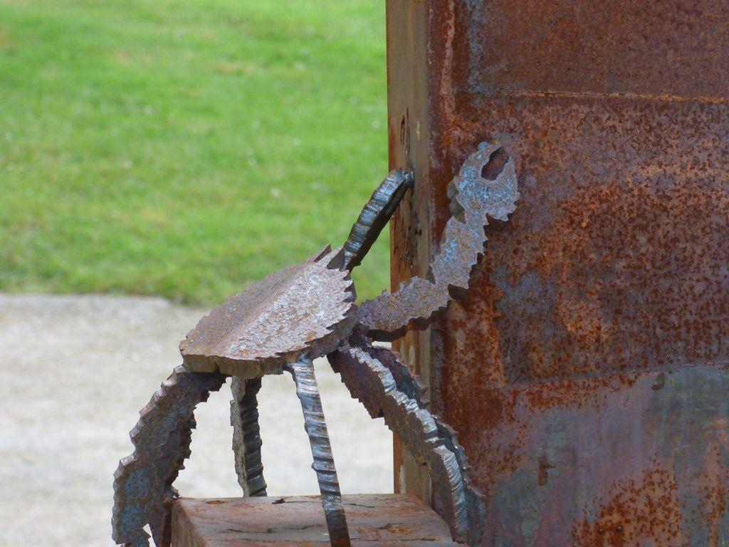 Les crabes débarquent au Stang Alar...